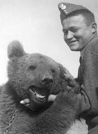 Le caporal Wojtek attendait sans doute un peu plus de considération. Après avoir glorieusement servi l'armée polonaise, il a été enfermé dans un zoo jusqu'à sa mort en 1963.